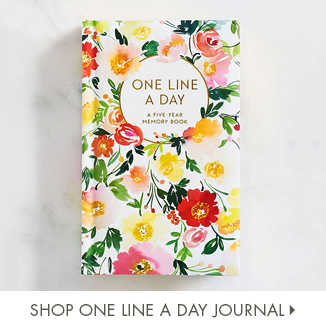 Shop One Line a Day Journal