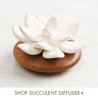 Shop Succulent Diffuser