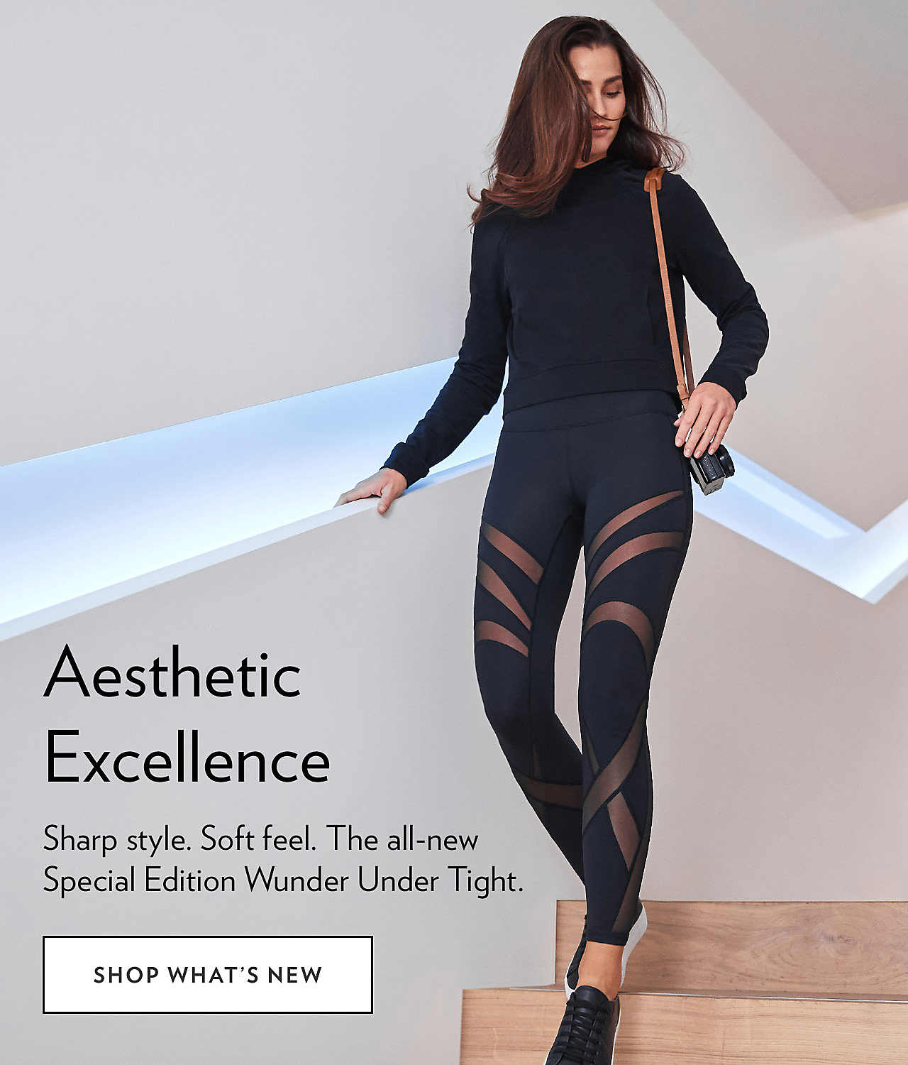 Aesthetic Excellence - SHOP WHATS NEW