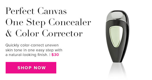 Perfect Canvas One Step Concealer & Color Corrector
