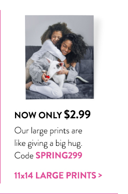 Now only $2.99 | Our large prints are like giving a big hug. | Code SPRING299