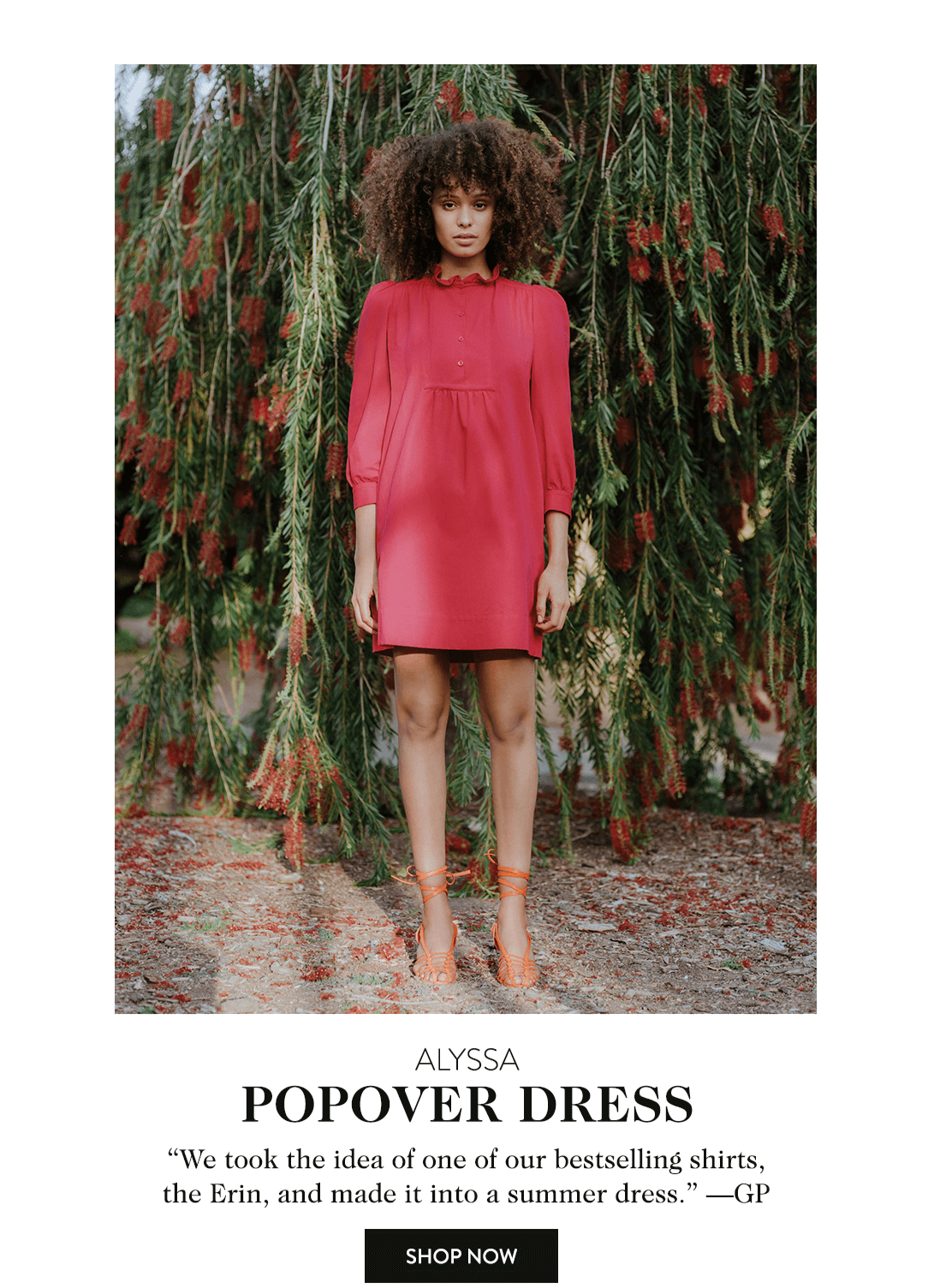 Alyssa Popover Dress