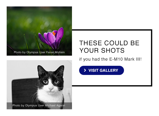 THESE COULD BE YOUR SHOTS if you had the E-M10 Mark II | Visit Gallery