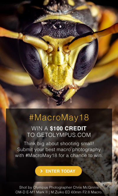 #MacroMay18 | WIN A $100 CREDIT TO GETOLYMPUS.COM | ENTER TODAY