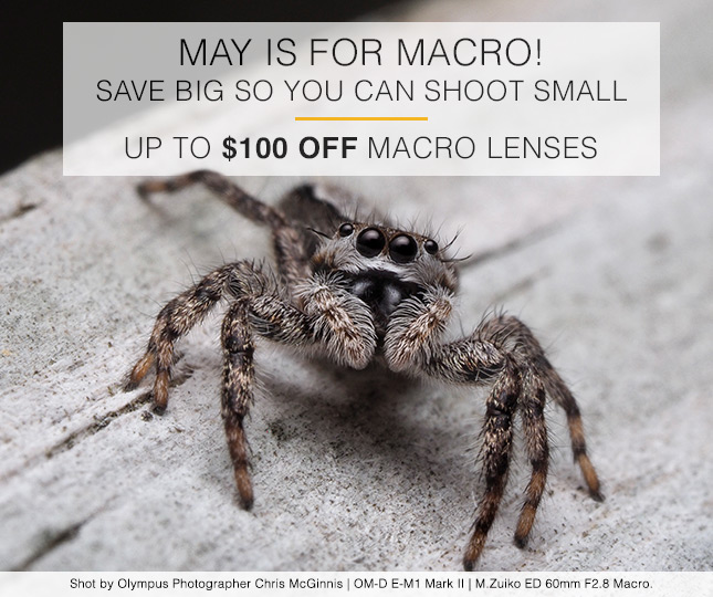 MAY IS FOR MACRO! SAVE BIG SO YOU CAN SHOOT SMALL | UP TO $100 OFF MACRO LENSES