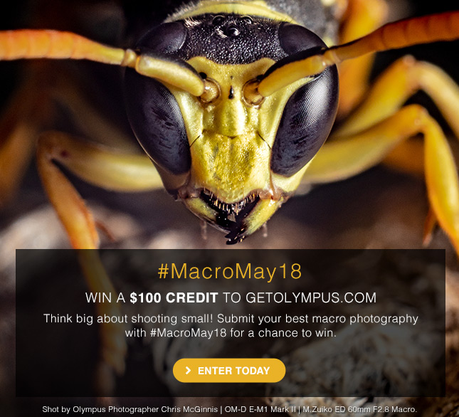 #MacroMay18 | WIN A $100 CREDIT TO GETOLYMPUS | ENTER TODAY