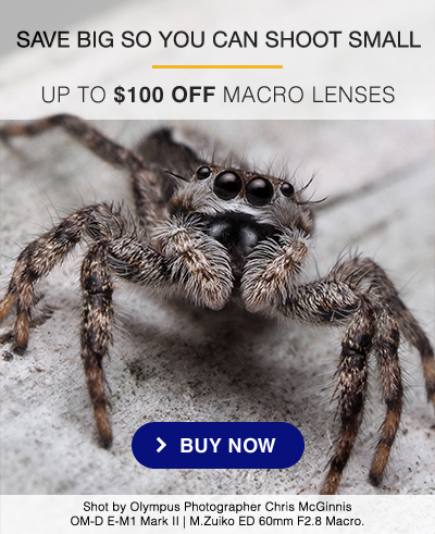 SAVE BIG SO YOU CAN SHOOT SMALL - UP TO $100 OFF MACRO LENSES