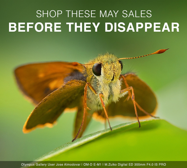 SHOP THESE MAY SALES BEFORE THEY DISAPPEAR