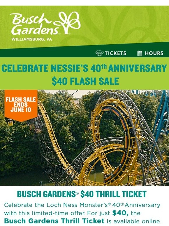 Busch Gardens: ⚡ Celebrate 40 Years With A $40 Thrill Ticket | Milled