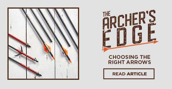 The Archer's Edge Choosing the Right Arrow