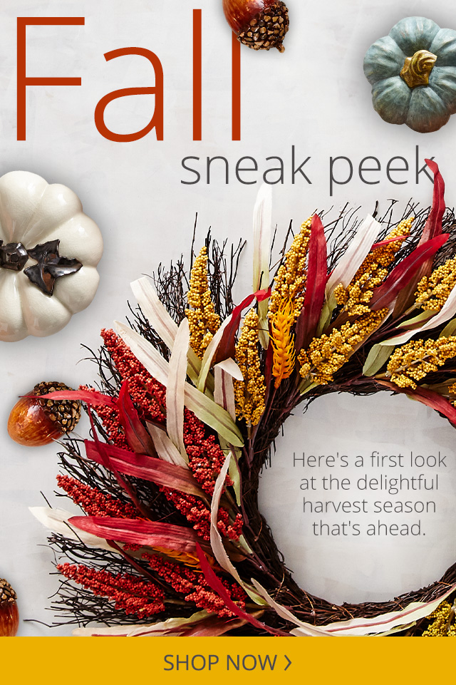 Fall Sneak Peak! Here's a first look at the delightful harvest season that's ahead.