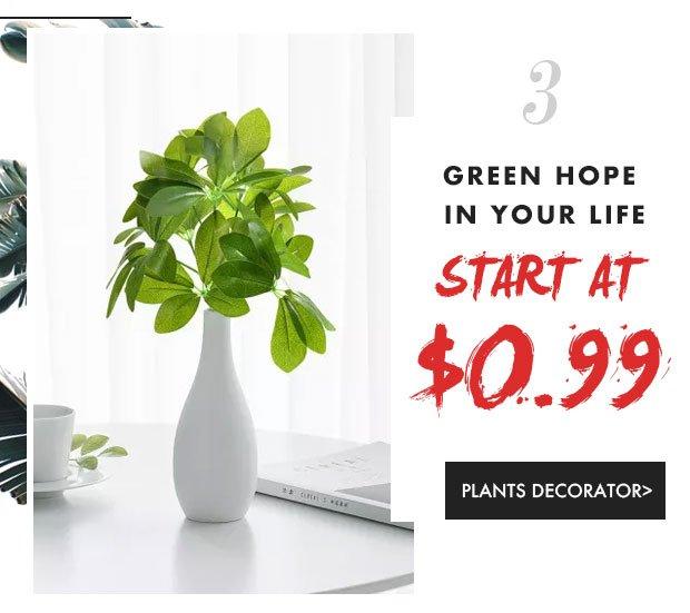Home-Living-Plant