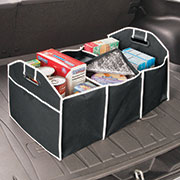 Collapsible Trunk Container with Cooler...Shop Here