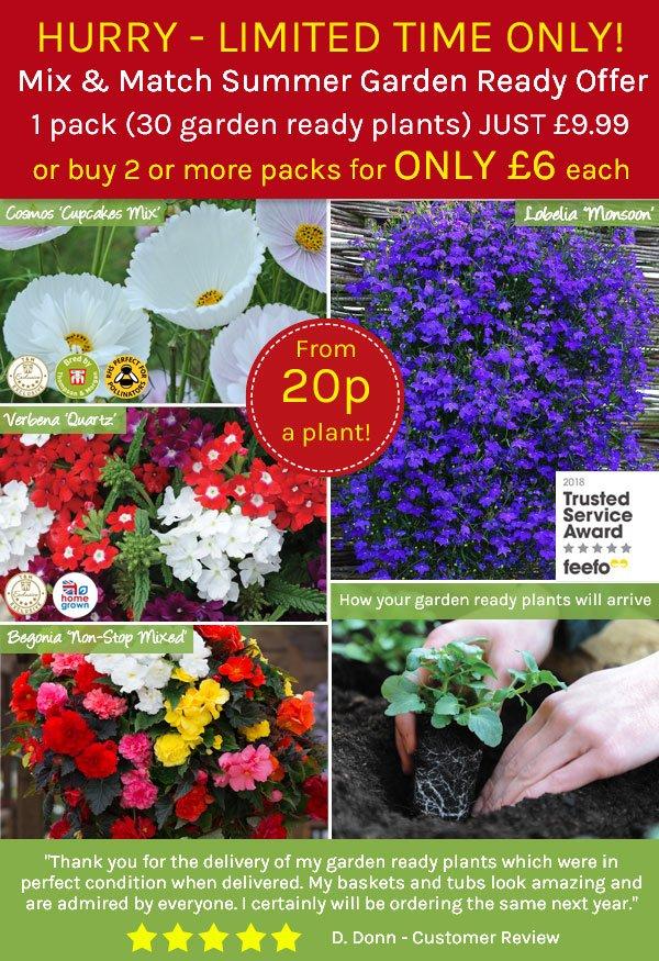 Garden Ready Summer 30 packs