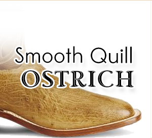 Smooth Quill Ostrich Boots