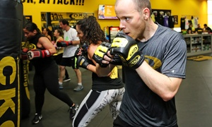 Kickboxing Classes with Gloves