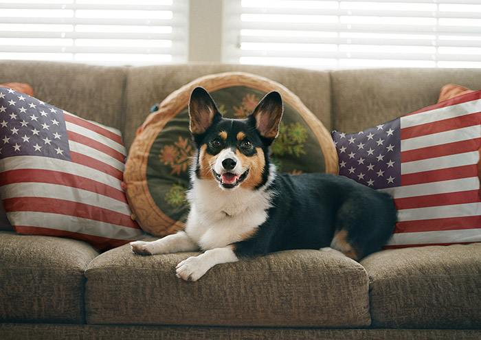Get your own United States Flag Pillow