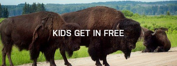 Kids get in Free