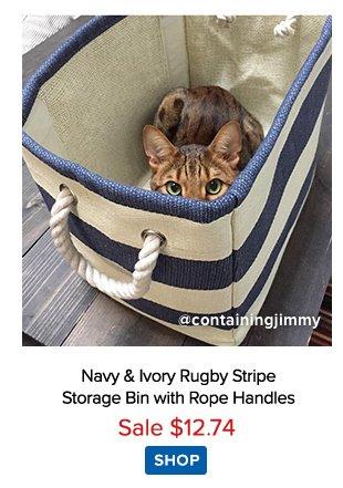 Rugby Stripe Bin