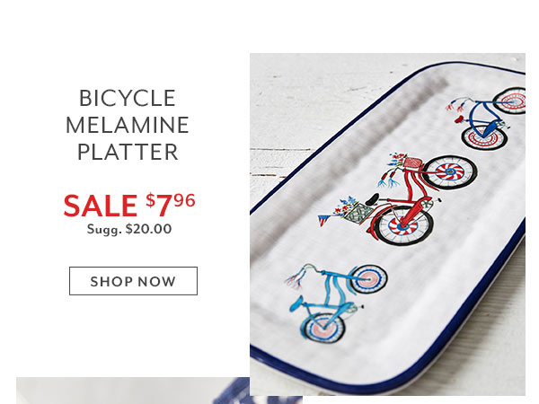 Bicycle Platter
