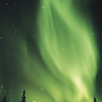 The Aurora Borealis shimmers in the sky, Canada by Norbert Rosing