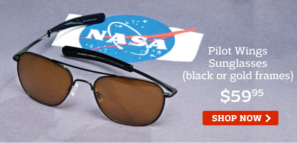 Pilot Wings Sunglasses