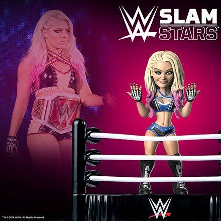 WWE Slam Crate