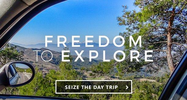 FREEDOM TO EXPLORE >