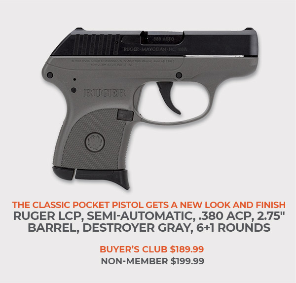 Ruger LCP, Semi-Automatic, .380 ACP, 2.75 Inch Barrel, Destroyer Gray, 6+1 Rounds
