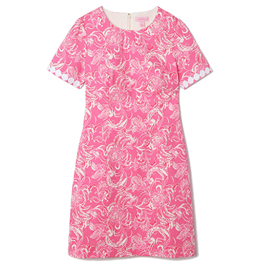 Gwyneth Stretch Shift Dress