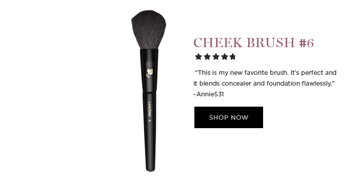 CHEEK BRUSH #6  'This is my new favorite brush. Its perfect and it blends concealer and foundation flawlessly.' -Annie531  SHOP NOW