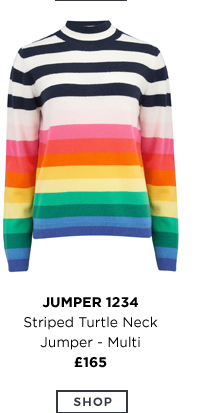 Striped Turtle Neck Jumper Multi
