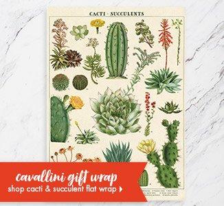 Shop Cavallini Cacti & Succulent Flat Wrap!