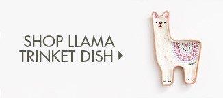 Shop Llama Trinket Dish!