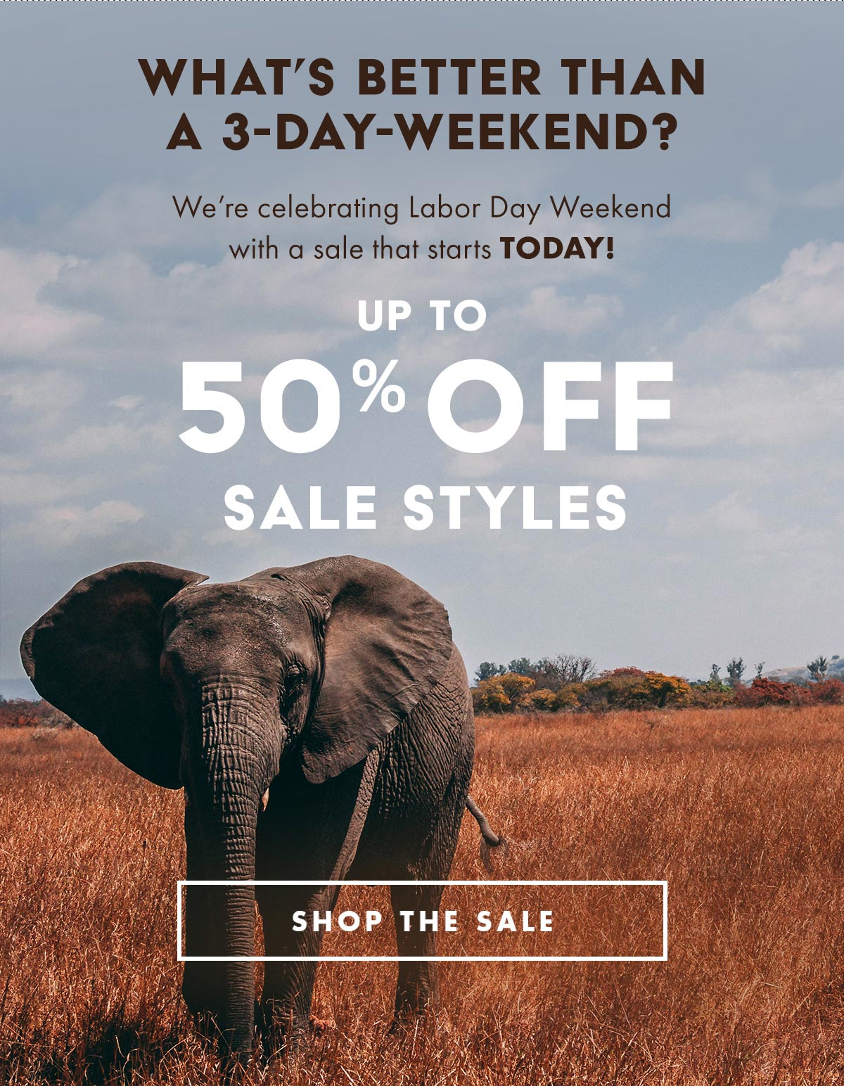 7f21ff348ccb06 Ivory Ella  Our Labor Day Weekend Sale Starts TODAY