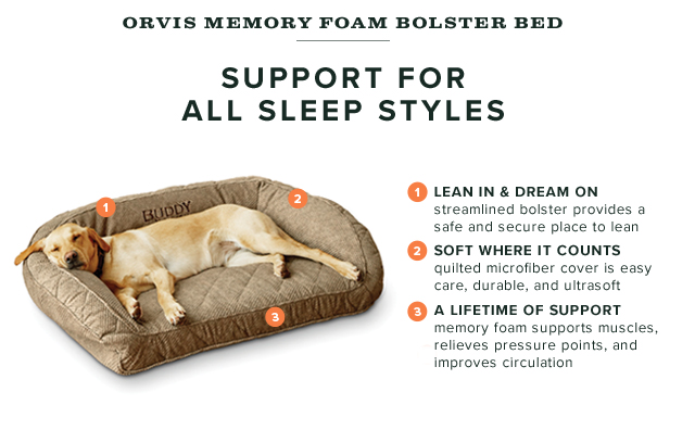 Orvis: See why this memory foam dog bed is a bestseller