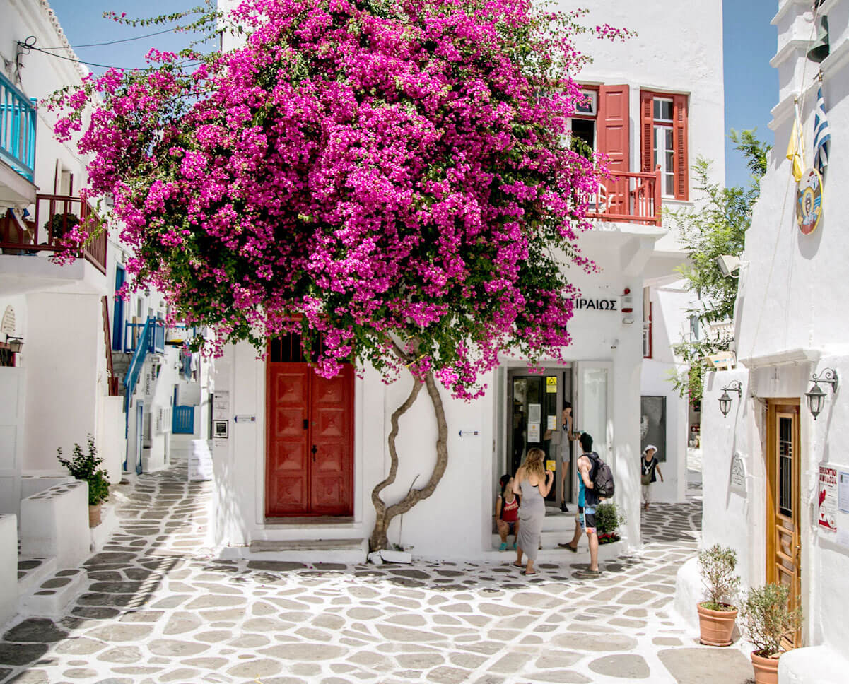 The Cyclades Guide
