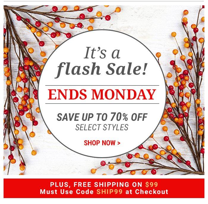 Flash Sale- Ends Monday