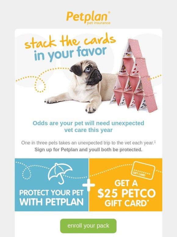 ddc48c86ed5 Petplan Pet insurance  Don t let life deal your pack a bad hand ...