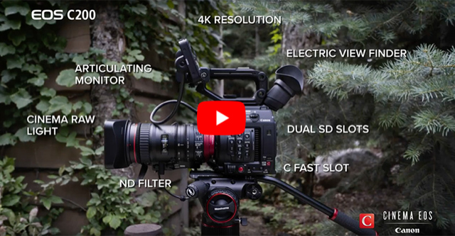 pictureline: 0% Financing on Canon Cinema + Last Chance To
