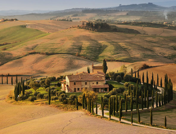 The Tuscany Guide