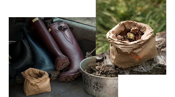 Discover New Field Wellington Boot Collection