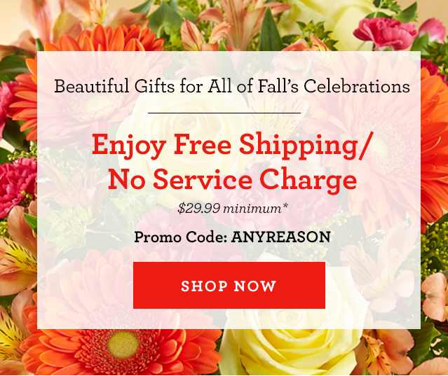 1 800 Flowers Com Free Shipping No Service Charge Just