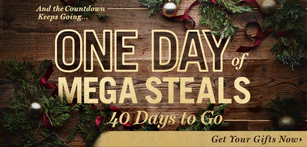 One Day of Mega Steals. Start MEGA gifting.