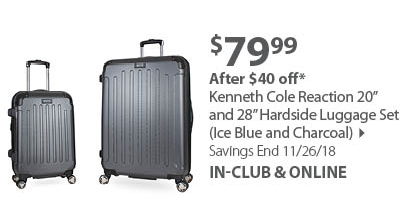 Kenneth Cole Reaction 20 and 28 Hardside Luggage Set (Ice Blue and Charcoal)