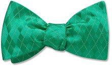 somerled green