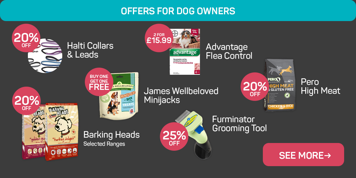 Browse more offers for dog owners!