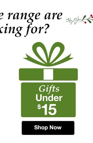 Shop Gifts Under $15!