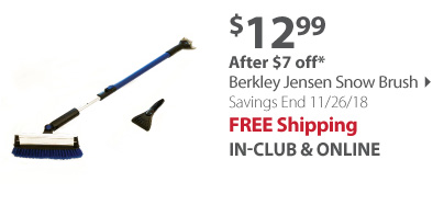 Berkley Jensen Snow Brush