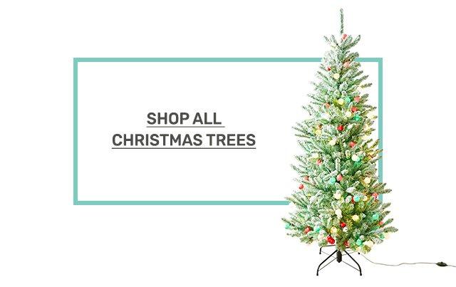 Shop Christmas trees.